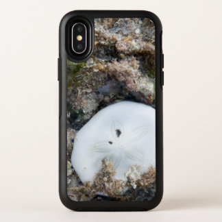 Sand Dollar in the Fiji Reef at Low Tide OtterBox Symmetry iPhone X Case