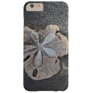 Sand dollar on sand barely there iPhone 6 plus case