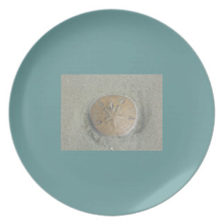 Sand Dollar photo by gbillips Dinner Plate