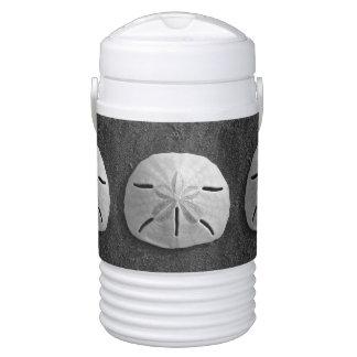 Sand Dollar Sea Shell Photo Igloo Coolers Cooler