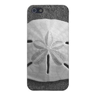 Sand Dollar Sea Shell Sand Beach iPhone Case