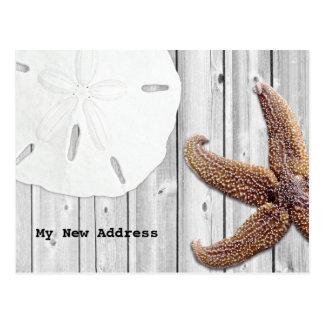 Sand Dollar Starfish Wood Beach New Address Postcard