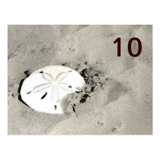 Sand Dollar Table Number Cards