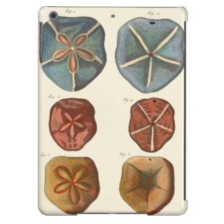 Sand Dollars Gems Case For iPad Air