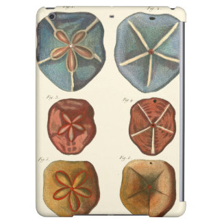 Sand Dollars Gems iPad Air Case