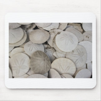 Sand dollars sea shell mouse pad