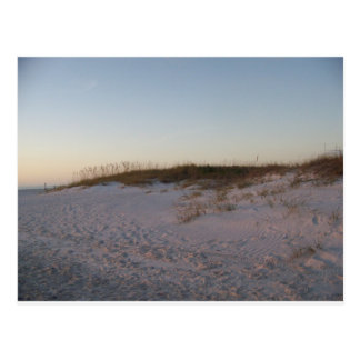 Sand dune at the Beach Postcard