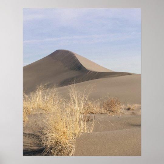 Sand dune formations. Bruneau Dunes State Park 2 Poster