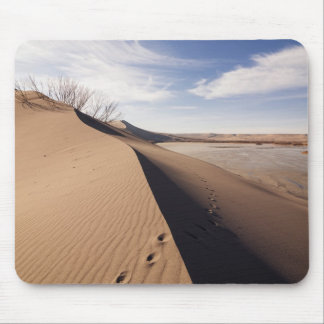 Sand dune formations. Bruneau Dunes State Park Mouse Pad