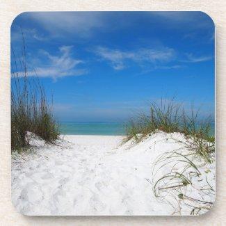 Sand Dune in Bradenton Florida Coaster