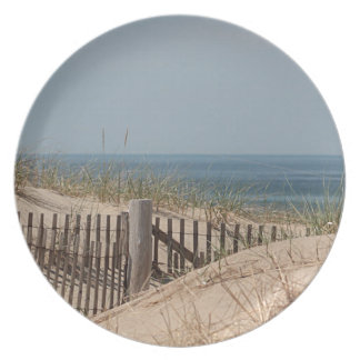 Sand dunes and beach fence dinner plate