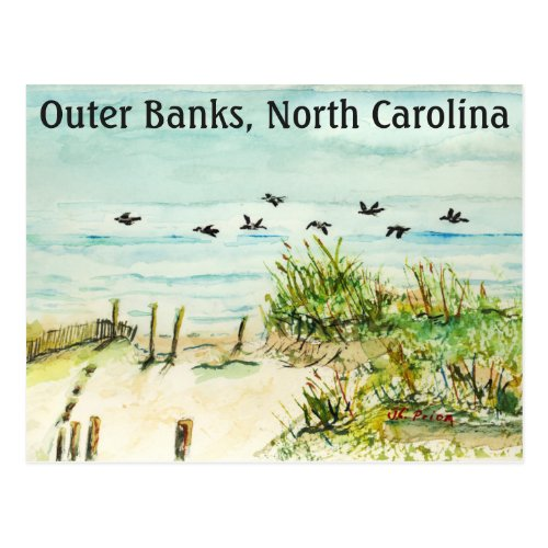 Sand Dunes and Seagulls Outer Banks North Carolina Postcard