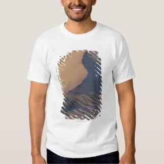 Sand dunes at Mesquite Flats T Shirt