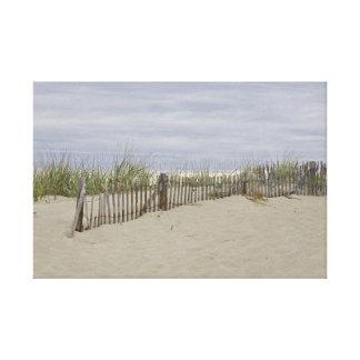 Sand dunes at Provincetown, Cape Cod Canvas Print