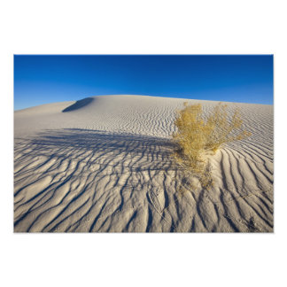 Sand dunes at White Sands National Monument in 3 Photo Print