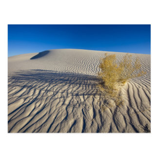 Sand dunes at White Sands National Monument in 3 Postcard
