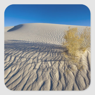Sand dunes at White Sands National Monument in 3 Square Sticker