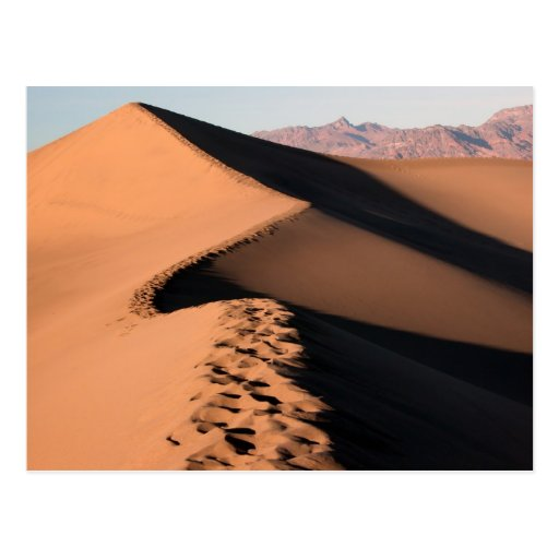 Sand Dunes - Death Valley Post Card
