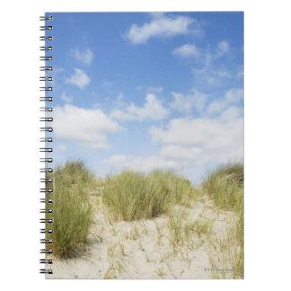 Sand dunes note books