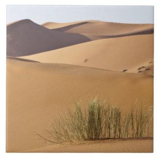 Sand dunes, Sahara desert, Morocco Tile