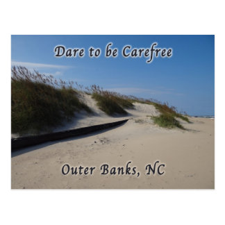 Sand Dunes Sea Oats Outer Banks NC Postcard