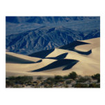 Sand dunes with shadows in Death Valley Postcard
