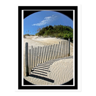 Sand fence postcard