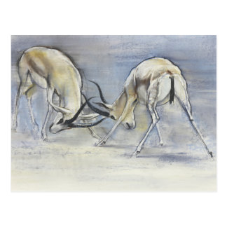 Sand Gazelles 2009  3 Postcard