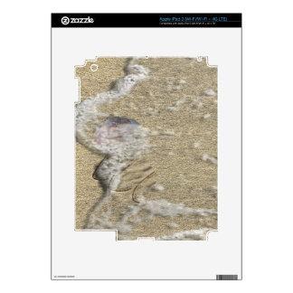 sand nature iPad 3 decals