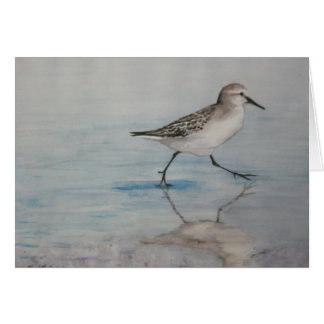 Sand Piper Bird Art Notecard Stationery Note Card