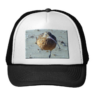 Sand Piper Hats