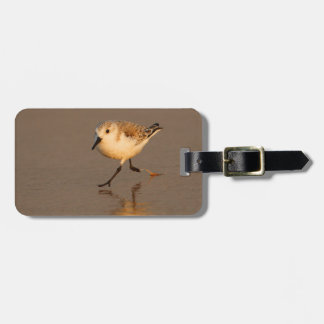sand piper tags for bags