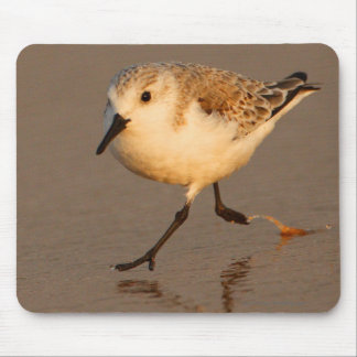 Sand Piper Mouse Pad