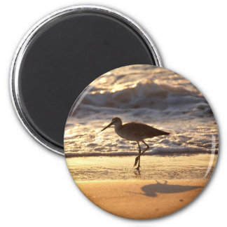sand piper on beach design magnet