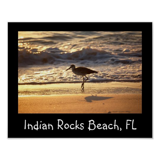 sand piper on beach design poster