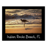 sand piper on beach design posters