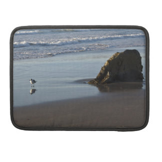 Sand Piper On The Beach Sleeve For MacBooks