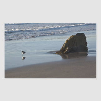 Sand Piper On The Beach Rectangular Sticker