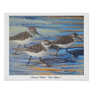 Sand Piper poster print