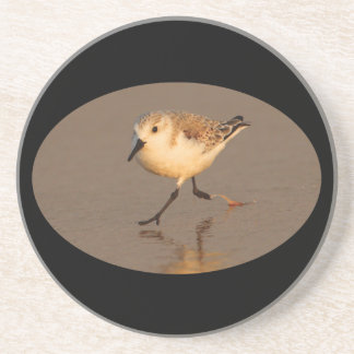 sand piper running on beach drink coaster