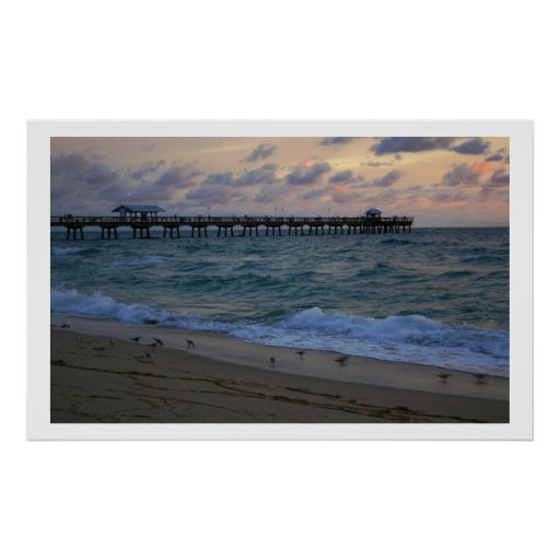 Sand Piper Sunrise Posters