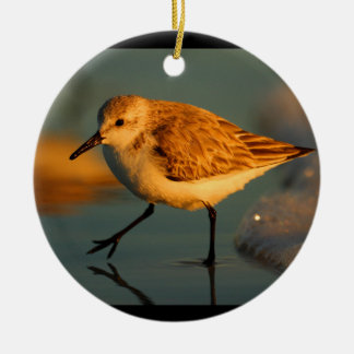 sand piper walking on beach Double-Sided ceramic round christmas ornament