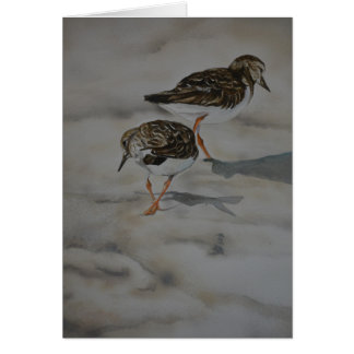 Sand Pipers in Beach Search Art Greeting Card