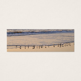 Sand Pipers nibbling breakfast in the waves Mini Business Card