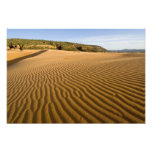 Sand ripples and dunes at Coral Pink Sand 2 Photo Print