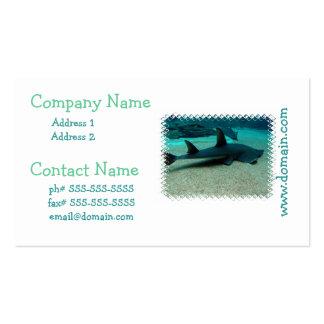 Sand Shark Business Card