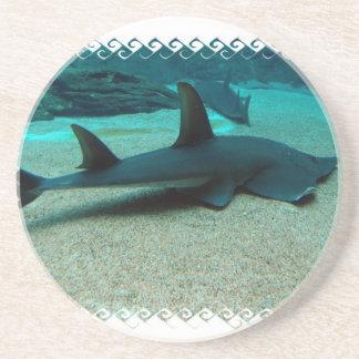 Sand Shark Coaster