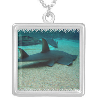 Sand Shark Necklace
