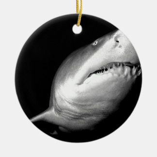 Sand Tiger Shark Ceramic Ornament