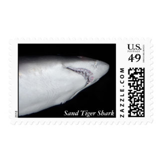 Sand Tiger Shark Postage Stamp